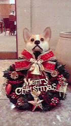 クリスマスといえば【6】