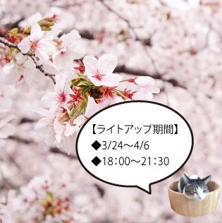 shinkawa201704.jpg
