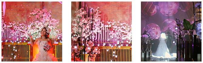 spring sakura -春・サクラ-